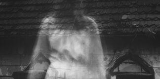 halucynacje